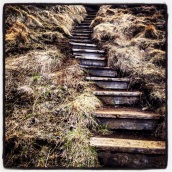 Some of the hiking trails near Thorsmork have stairs